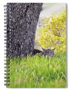 Bobcat Watch Spiral Notebook