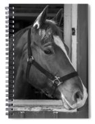 Bode 15061b Spiral Notebook