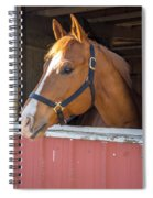 Bode 15068 Spiral Notebook