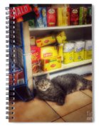 Bodega Cat - At Home In New York Spiral Notebook