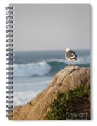 California Gull 2 - Bodega Head Sentinel  Spiral Notebook