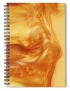 Body Heat Spiral Notebook