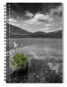 Bog Cotton On Blue Lough Spiral Notebook