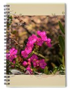 Bog Laurel Flowers Spiral Notebook