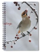 Bohemian Seasons Greetings Spiral Notebook