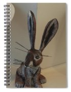 Boink Rabbit Spiral Notebook