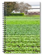 Bok Choy Field And Farm Spiral Notebook