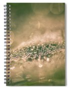 Bokeeh Of Pearls Spiral Notebook