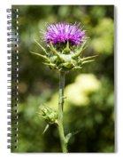 Bold Artichoke Thistle Spiral Notebook