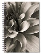 Bold Bloom Spiral Notebook
