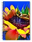 Bold Spiral Notebook