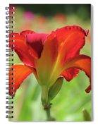 Bold Red - Daylily Spiral Notebook