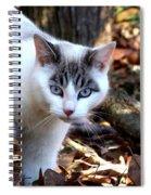 Boldly Spiral Notebook