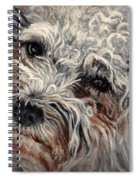 Bolognese Breed Spiral Notebook