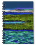 Bolsa Chica Wetlands I Abstract 1 Spiral Notebook