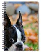 Bombed Spiral Notebook