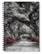 Bonaventure Cemetery Bw Spiral Notebook