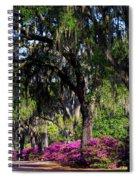 Bonaventure Cemetery IIi Spiral Notebook