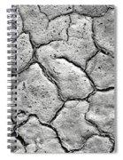 Bone Dry  Spiral Notebook