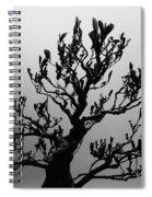 Bonsai Black And White Spiral Notebook