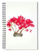 Bonsai Tree - Kurume Azalea Spiral Notebook
