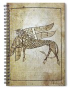 Book Of Durrow, C680 A.d Spiral Notebook