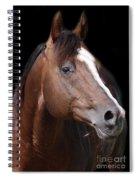 Boomer Spiral Notebook