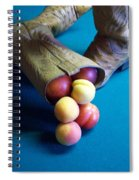 Boot-a-copia Spiral Notebook
