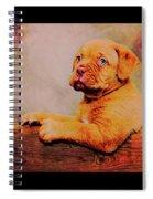 Bordeaux Mastiff Pup Spiral Notebook