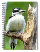 Boring Wood  Spiral Notebook