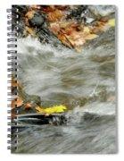 Boscobel Stream Spiral Notebook