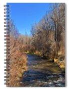 Bosque De Rio De Taos Spiral Notebook