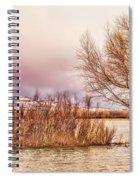 Bosque Winter II Spiral Notebook