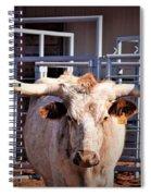 Boss Lady Spiral Notebook