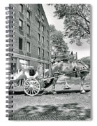Boston Buggy Spiral Notebook
