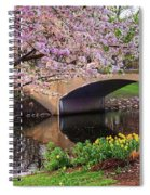 Boston Ma Spring Tree On The Charles River Esplanade Boston Ma Spiral Notebook