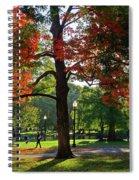 Boston Public Garden Autumn Tree Morning Light Walk In The Park Spiral Notebook