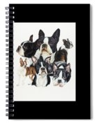 Boston Terrier Spiral Notebook