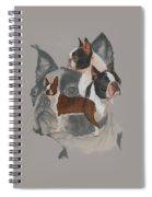 Boston Terrier Revamp Spiral Notebook