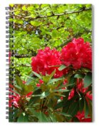 Botanical Garden Art Prints Red Rhodies Trees Baslee Troutman Spiral Notebook