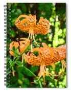Botanical Master Gardens Art Prints Orange Tiger Lilies Baslee Troutman Spiral Notebook