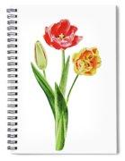 Botanical Tulip Bouquet Watercolor Spiral Notebook