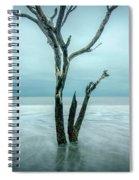 Botany Bay Plantation Edisto Island Sc Spiral Notebook