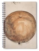 Botany: Mammee, 1585 Spiral Notebook