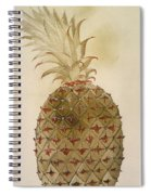 Botany: Pineapple, 1585 Spiral Notebook