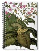 Botany: Tobacco Plant Spiral Notebook