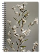 Botswana Wildflower  Spiral Notebook