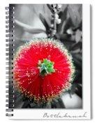 Bottlebrush Callistemon Spiral Notebook