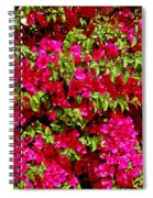 Bougainvillea And Foliage Spiral Notebook