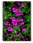 Bougainvillea Floral Print Spiral Notebook